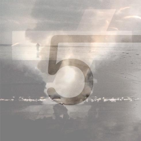 5---fauve